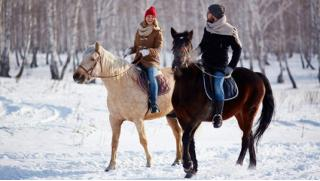 Контактный зоопарк в Питере! Билеты в контактный зоопарк или прогулки на лошадях в конном клубе «Бастион» в усадьбе Бахаревых!