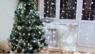 Без неё не будет праздника! Аренда новогодней живой ёлки под ключ от компании Rentmania!